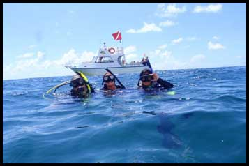 Dolphin Sun Charters | South Florida | Best Scuba Diving | The Fish Bowl