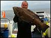 Dolphin Sun Charters | South Florida | Best Scuba Diving | Best Dive Charter in Boynton Beach For Massive Groupers