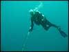 Dolphin Sun Charters | South Florida | Best Scuba Diving | Boynton Beach, FL Scuba Diving