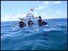Dolphin Sun Charters | South Florida | Best Scuba Diving | Delray Beach Dive Boat